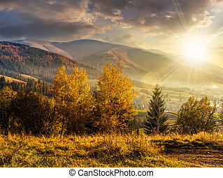 foggy and hot sunset in Carpathian mountains at sunset -...
