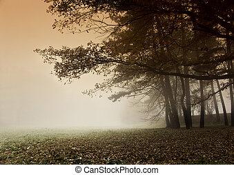 Foggy autumn and non-urban scene in southern Poland