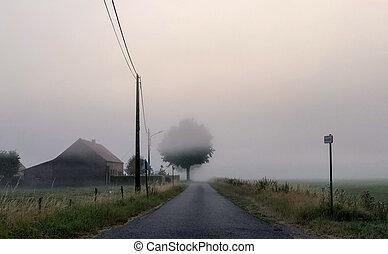 Foggy countryside road sunrise