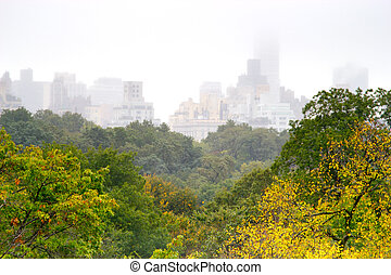 Foggy day in Central Park, NY