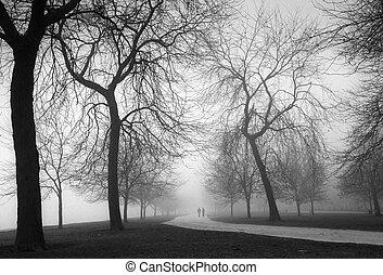 foggy day - Park near lake Michigan, IL
