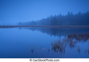foggy dusk on lake