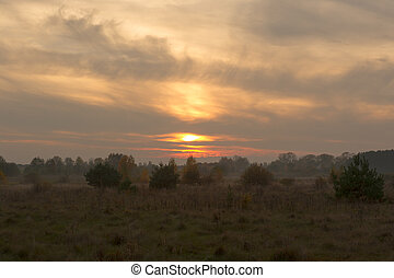 Foggy Evening Before Sunset in Countryside in Autumn