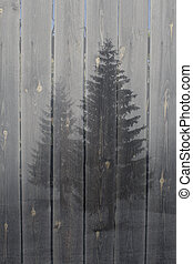 Foggy forest on a wood background