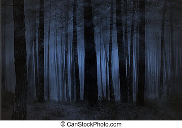 Foggy forest - Spooky foggy forest at night