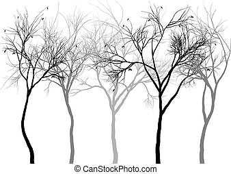 Foggy forest, vector - Group of detailed tree silhouettes, ...