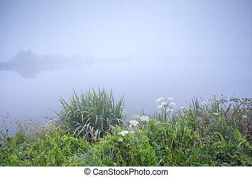 foggy gloomy morning on river