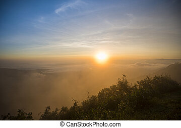 foggy landscape dramatic/ the morning beautiful sunrise mist cover mountain background - forest hill mist fog flow with wind and blue sky