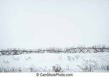 foggy landscape with old broken tree and snowy field