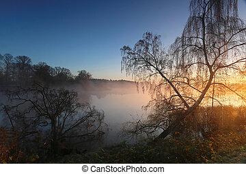 Foggy morning at sunrise