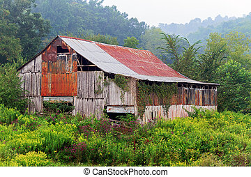 Foggy Morning Barn - An old dilapidated barn stands among...