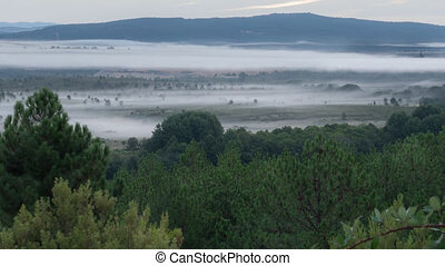 Foggy morning, dancing at dawn - Fog and mist dancing at...