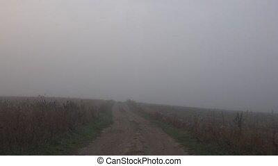 foggy morning in rural region. Car drive with camera inside....