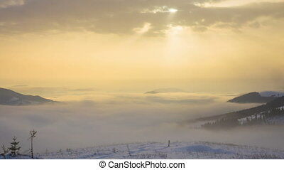 Foggy Morning in the Winter Mountains Forest on the...