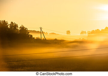 Foggy morning on meadow. sunrise landscape