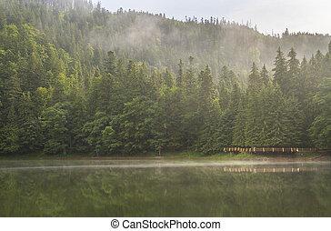 Foggy morning on the lake Synevyr, Ukraine