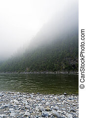 Foggy morning on the shore of a mountain river.