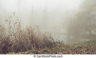 Foggy morning over the still lake