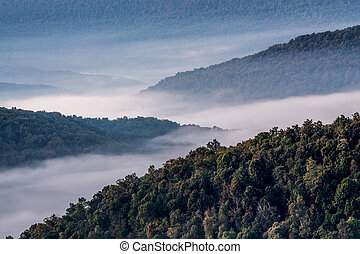 Foggy Morning - Overlooking the Ozark Mountains on a foggy ...