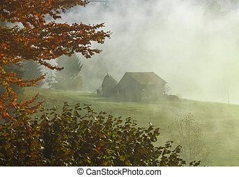 Foggy morning sunrise landscape