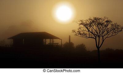 Foggy morning sunrise rural landscape