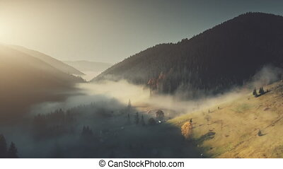 Foggy mountain landscape dense forest aerial view - Foggy...