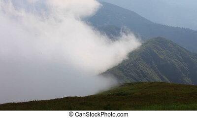 foggy mountain landscape. nature. 1