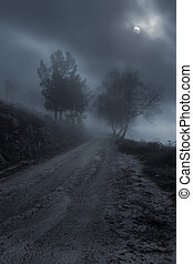Foggy mountain road at night