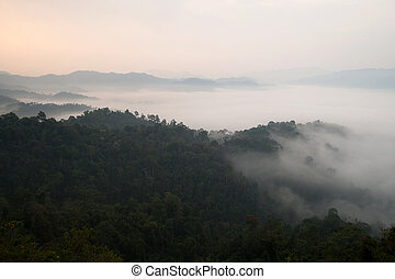 foggy mountain valley landscape, Phetchabun, Thailand