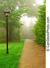 Foggy park - Path in a green foggy park in the spring