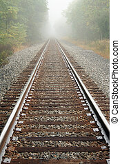 Foggy Railroad Tracks - Railroad Tracks with trees on a...