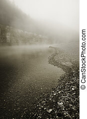 Foggy River Bottom Morning