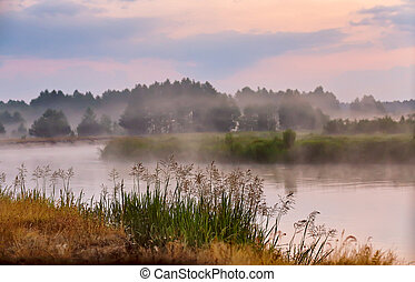 Foggy river in the morning. Misty dawn at summer. Misty morning scene.