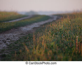 Foggy road - Road throughout foggy field. Early morning...