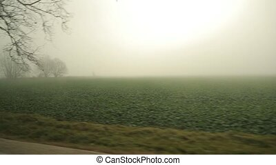 Foggy roadside view - Looking at the foggy roadside from a ...