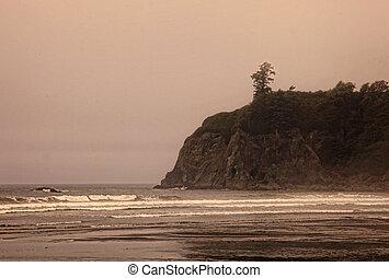 Foggy Rocky Coast