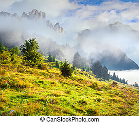 Foggy summer morning in the italian dolomites alps.