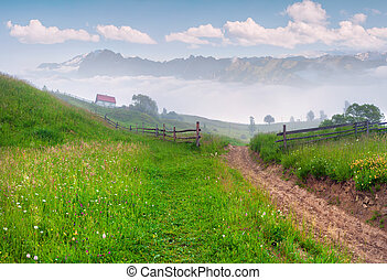 Foggy summer morning in the mountain village