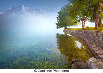 Foggy summer morning on the mountain lake
