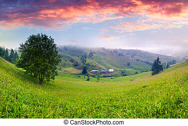 Foggy summer panorama of the foggy Carpathian mountains at sunrise
