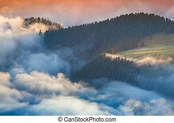 Foggy summer sunrise in the Italian Alps. Ferchetta mountain ran