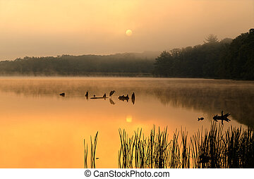 Foggy Sunrise at the Lake