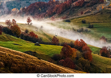 foggy sunrise in Carpathian mountains - cold morning fog in...