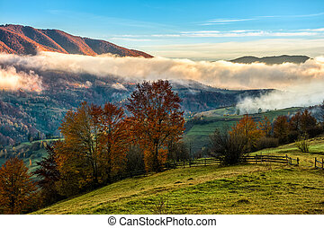 foggy sunrise in Carpathian mountains - golden hot sunrise...