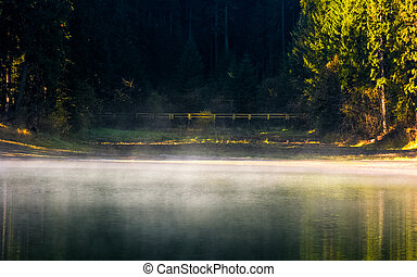 foggy surface of the forest lake at sunrise. beautiful...