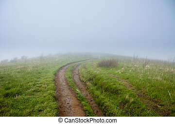 foggy trail to unknown destination