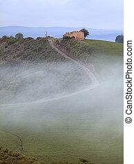 Foggy Tuscan Road