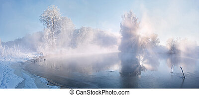 Foggy winter dawn