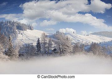 Foggy winter landscape in mountain village
