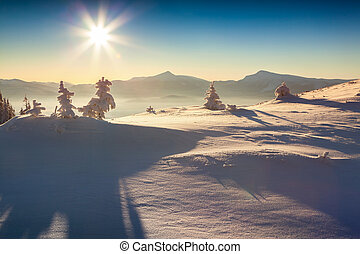 Foggy winter morning in the Carpathian mountains. Happy New ...